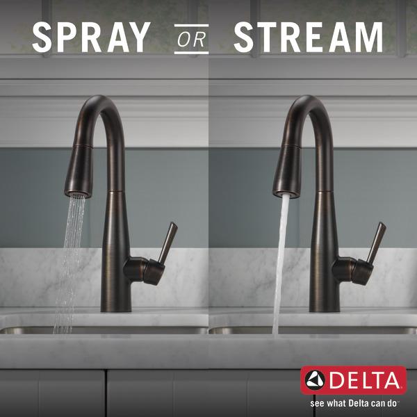 9913-RB-DST_KitchenSprayorStream_Infographic_WEB.jpg