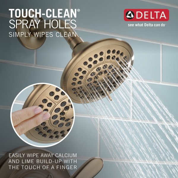 T14238-CZ_TouchCleanShowers_Infographic_WEB.jpg