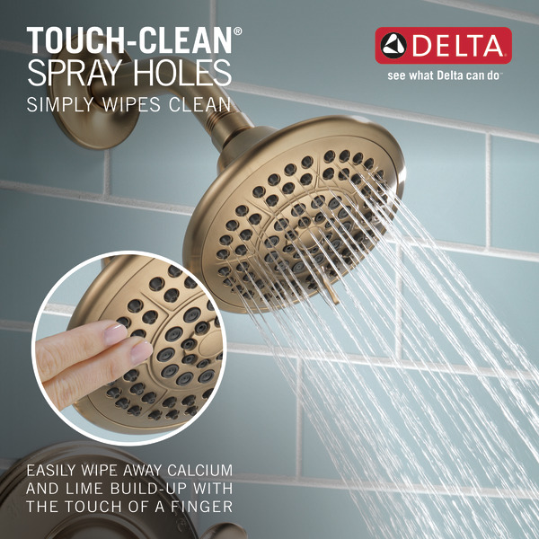 T14294-CZ_TouchCleanShowers_Infographic_WEB.jpg