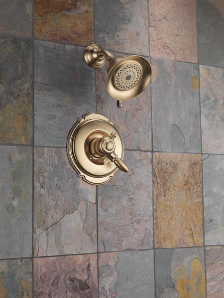 Monitor® 17 Series Shower Trim T17255-CZ | Delta Faucet