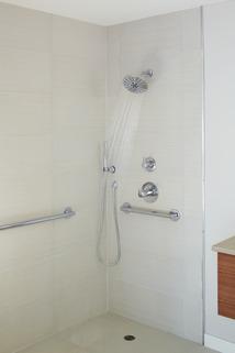 Premium Single Setting Adjustable Wall Mount Hand Shower