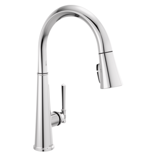 ShieldSpray Pull-Down Kitchen Faucet 1L